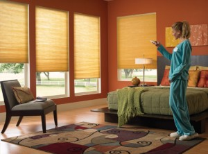 Sacramento Motorized Blinds